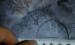 【案例】锅炉磁粉检测典型裂纹缺陷