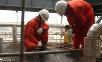 上海某化工厂IRIS检测技术工作小结